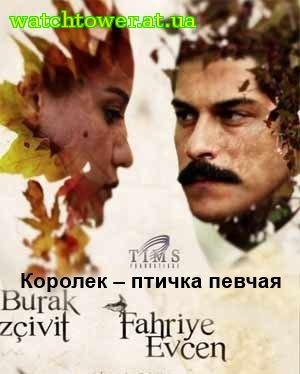 Птичка певчая 31 серия на русском языке